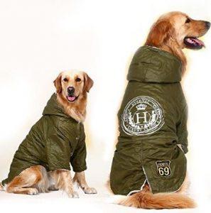 perro camuflaje verde militar